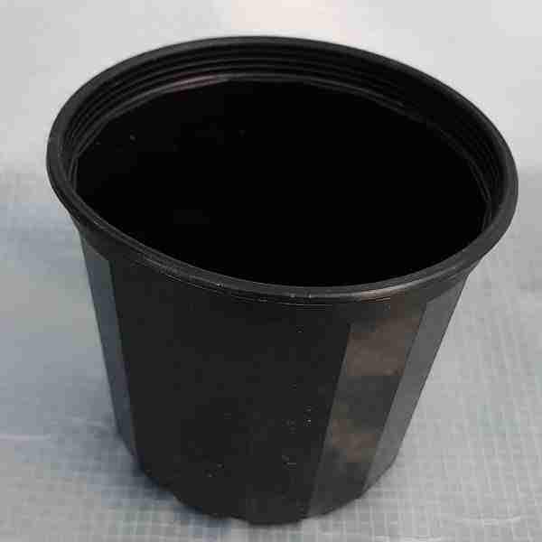 black plastic pot